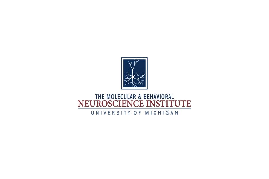 healthcare logo, neuroscience logo, brand identity, branding